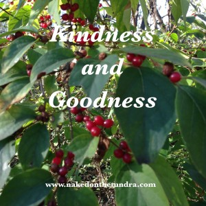 Kindness and Goodness