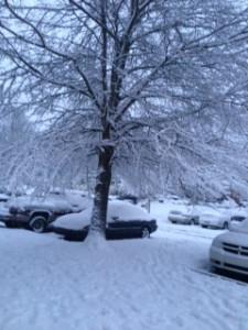 Snowstorm 2 1-22