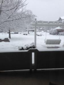 Snowstorm 3 1-22